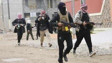 """عشائر الأنبار تنفي وجود """"داعش"""" في الفلوجة والرمادي"""