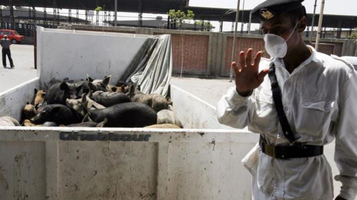 Swin flue egypt (Reuters)