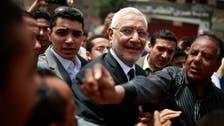 Key Egyptian politician slams 'deceptive' polls