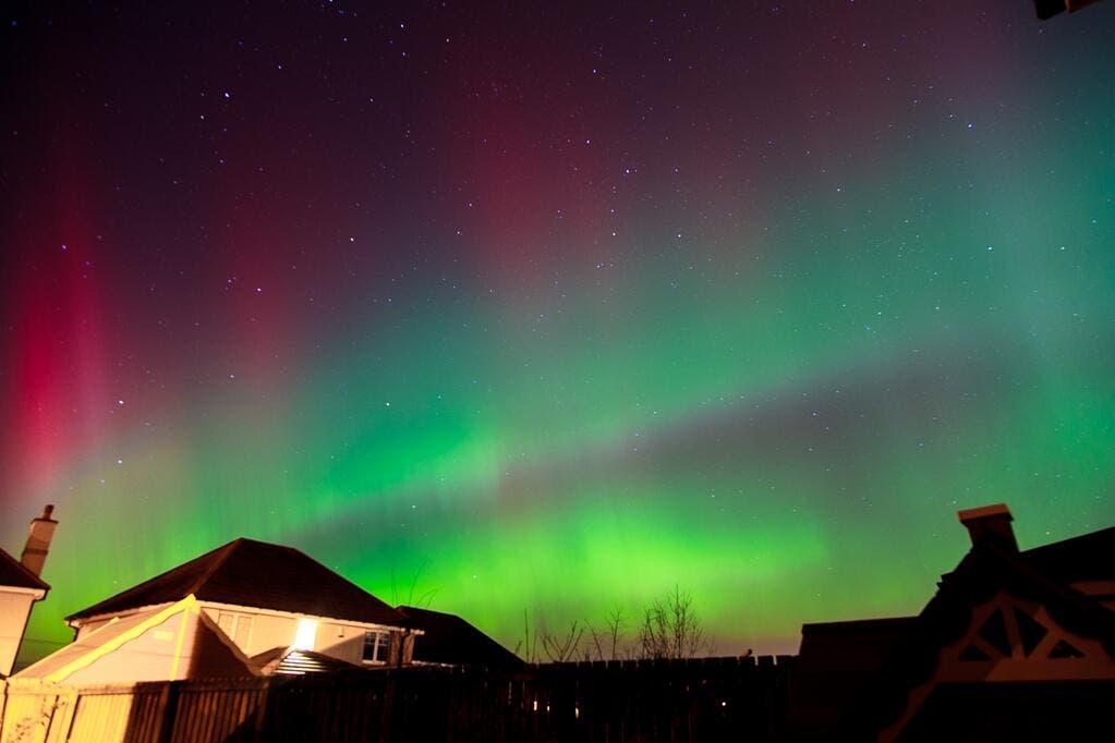 aurora tiwtter