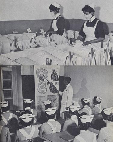 ممرضات في المستشفيات ويدرسن البيولوجيا بالجامعة