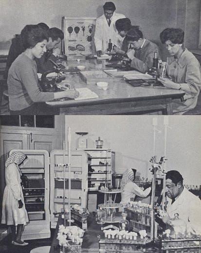كان في كابل مركز طبي للأبحاث عن التلقيح والمضادات تعمل فيه الأفغانيات
