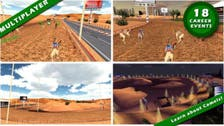 And they're off: UAE team launches camel racing app