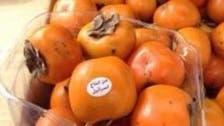 سعودی عرب میں اسرائیل سے درآمد پھل کی فروخت کا انکشاف!