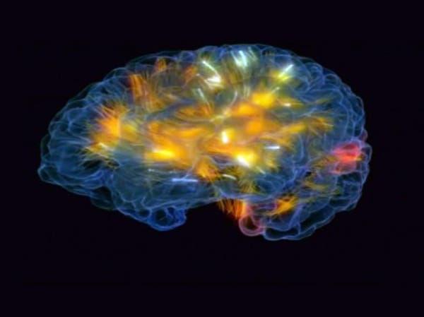 مفاجأة.. الدماغ يتوقف عن إنتاج خلايا الذاكرة في سن 13