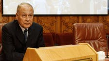 Egypt ex-foreign minister says Jan. 25 was not a 'revolution'