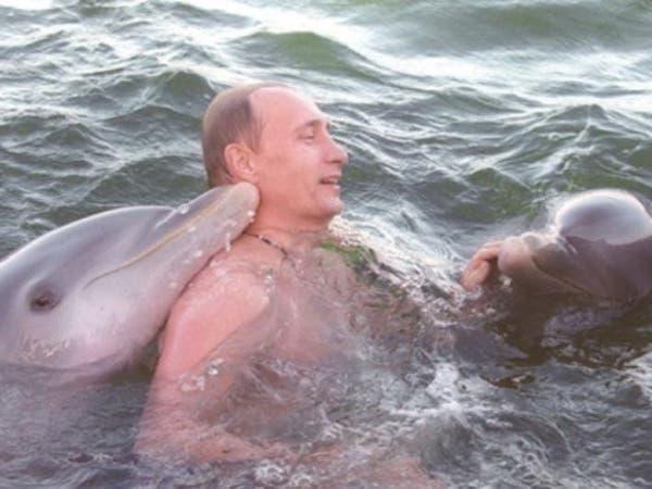 بعد ضم القرم.. بوتين يستولي على دلافين أوكرانيا