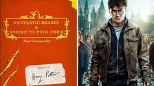 Harry Potter spin-off 'Fantastic Beasts' to get movie trilogy