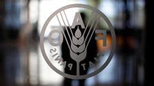World food prices jump again in March - U.N.'s FAO
