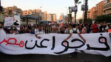 Egypt activists rally against anti-protest law