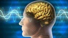کیا ہمارا دماغ 25 برس کی عمر کے بعد بڑھاپے سے متاثر ہو جاتا ہے؟
