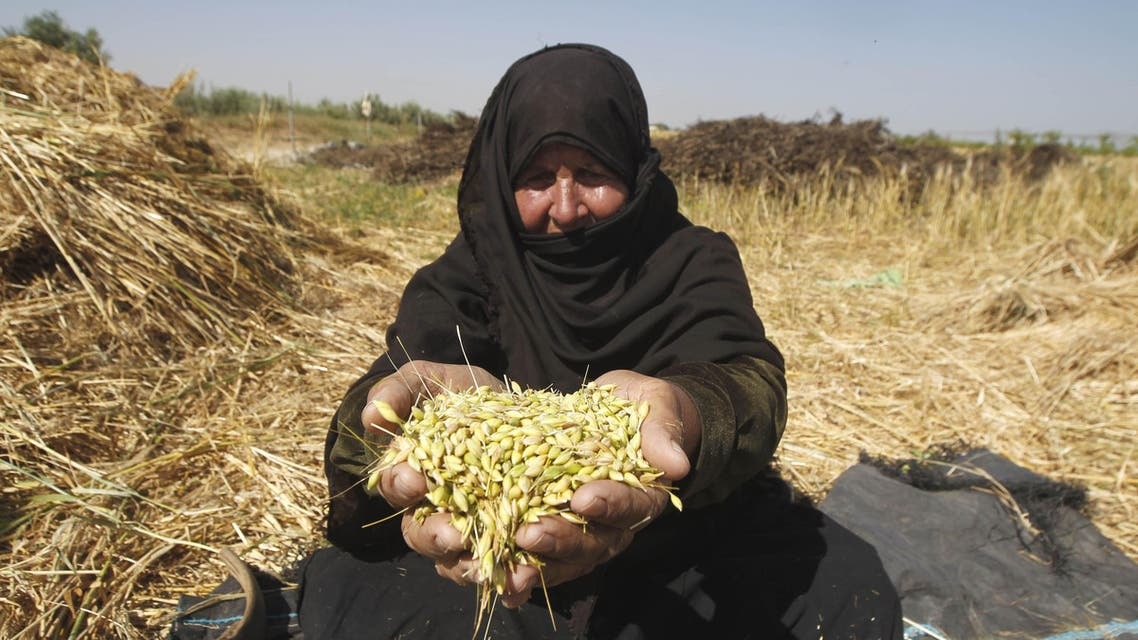Working the land in Gaza