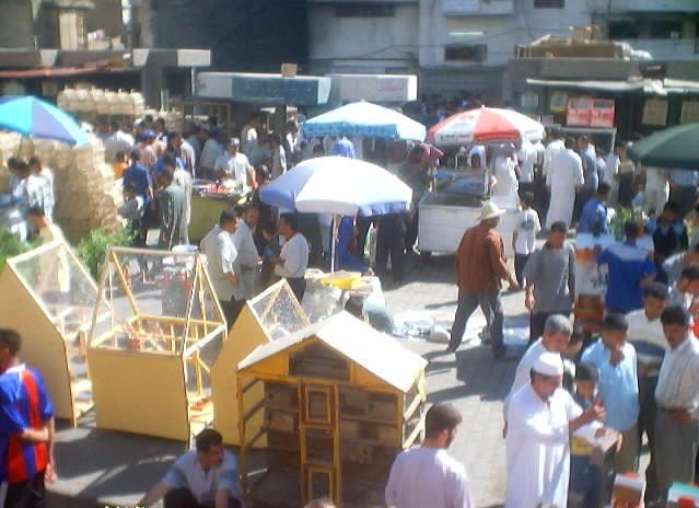 سوق الطيور والحيوانات في بغداد
