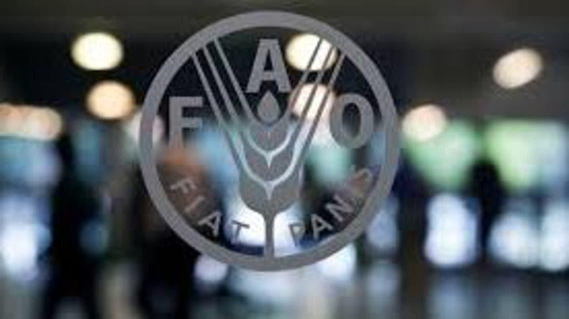 منظمة الأغذية والزراعة فاو