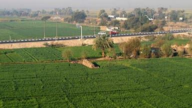 مصر تعيد ضريبة الأراضي الزراعية المفروضة عام 1939