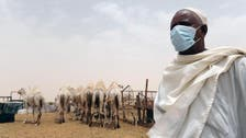 MERS death toll in Saudi Arabia rises to 163