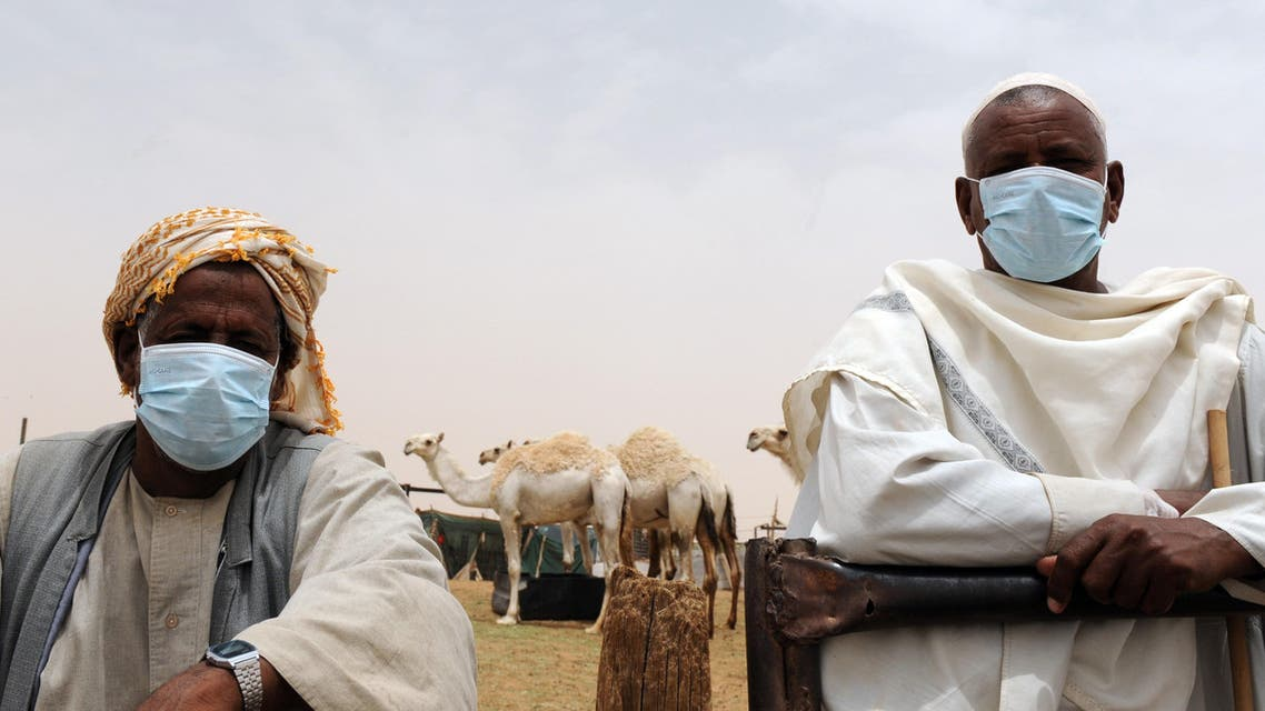 Saudi MERS Camels AFP