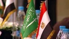السعودية ومصر تدعمان زيادة الاستثمارات المشتركة