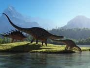 """دراسة أميركية تكشف: الديناصورات دمها """"فاتر"""""""