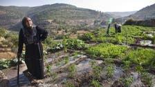 Palestinian village Battir joins UNESCO world heritage sites