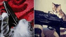 Cat got your gun? Iraq, Syria jihadist pictures go viral