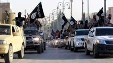 """""""ریاض پر داعش کی حمایت کے الزامات بے بنیاد ہیں"""""""