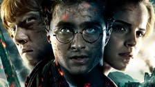 Harry Potter is back, married and grey