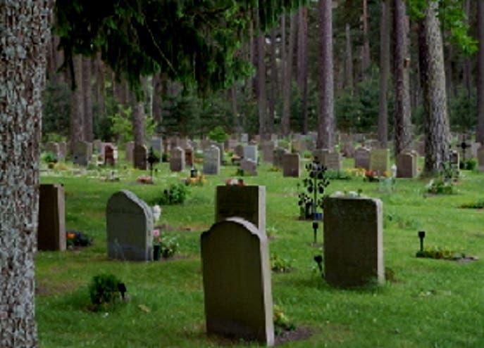 أكثر من 40 ألفا بين 198 ألف شخص فقدوا أحد الأبوين وهم أطفال أو يافعين في 3 دول اسكندنافية توفوا في الأربعينات أو أقل من أعمارهم