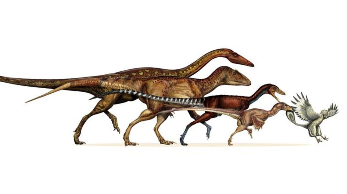 تحول ديناصور إلى طير