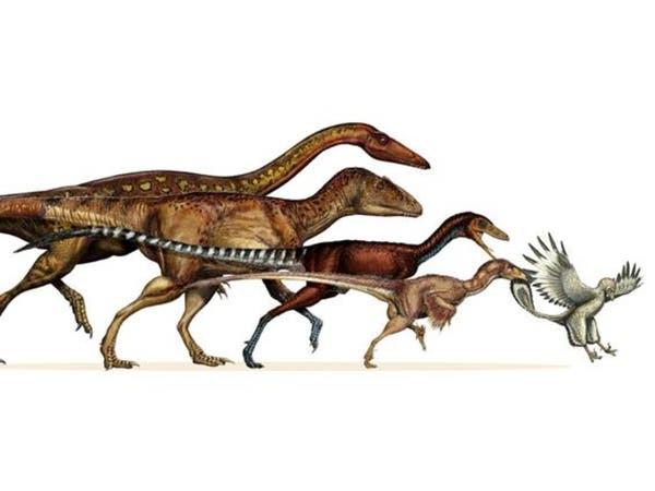 تحقيق جديد بالمكسيك: كيف انقرضت الديناصورات؟