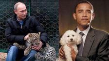 روسی نائب وزیراعظم کا ٹویٹ، اوباما کا کتا، پیوتن کا چیتا