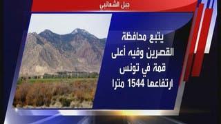 ما هو جبل الشعانبي التونسي؟