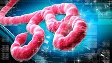 Saudi man dies of suspected Ebola virus