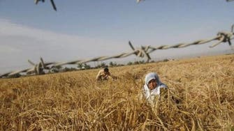 U.N. food body says Gaza farms devastated by fighting