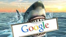 Do sharks hate the Internet? Google faces under-water predators