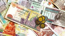 Egypt foreign reserves close to July level - central bank governor