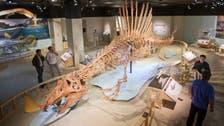 Alien-like giant water-living dinosaur unveiled