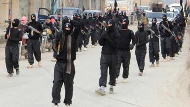 """عضو بالكونغرس:""""الذئاب المستوحدة"""" مشكلة حربنا ضد داعش"""