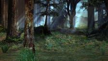 وحدي في الغابة.. لمدة 17 يوماً