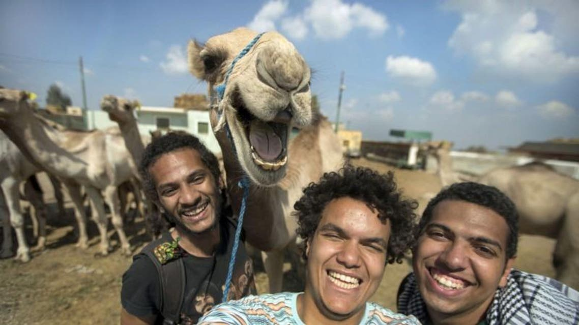 smiling camel CATERS