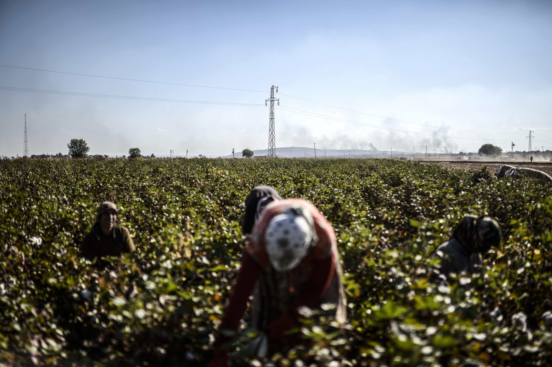 Kobane's Syrian Kurds face more hardship