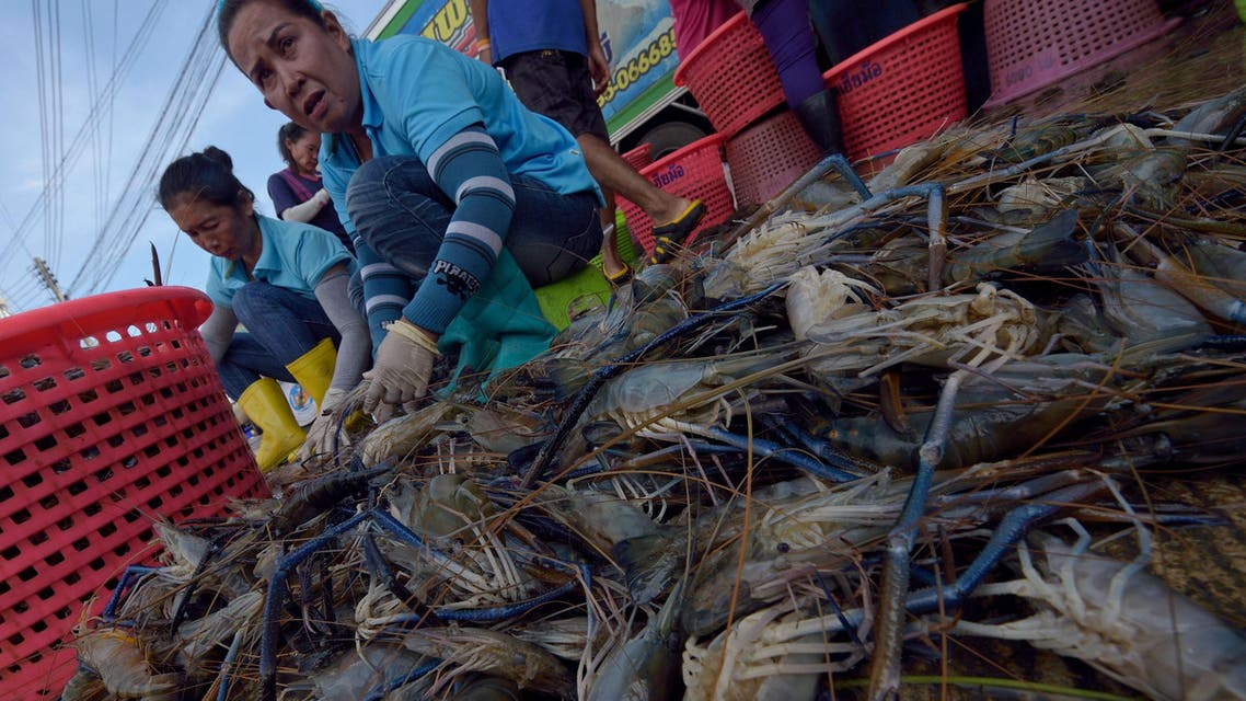 Thailand fish industry in the spotlight