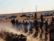 مجزرة جديدة.. #داعش يعدم 300 عراقي من العشائر