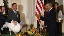 Obama defends legal authority to pardon turkeys