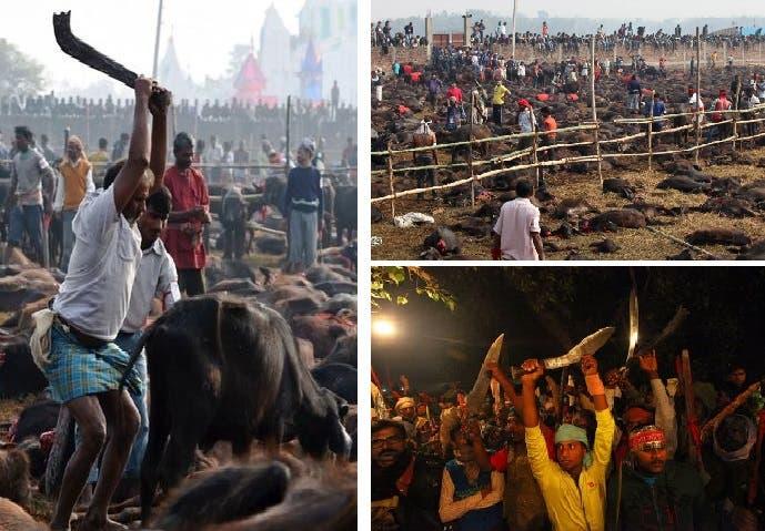حملة السكاكين كالمناجل يتوجهون بها لضرب الرقاب أمام المعبد الهندوسي