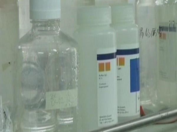 السعودية.. إنفلونزا الطيور بالرياض لا ينتقل للإنسان