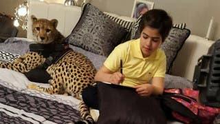 مضاوي العنزي.. طفلة ترفض النوم من دون ذئب بجانبها