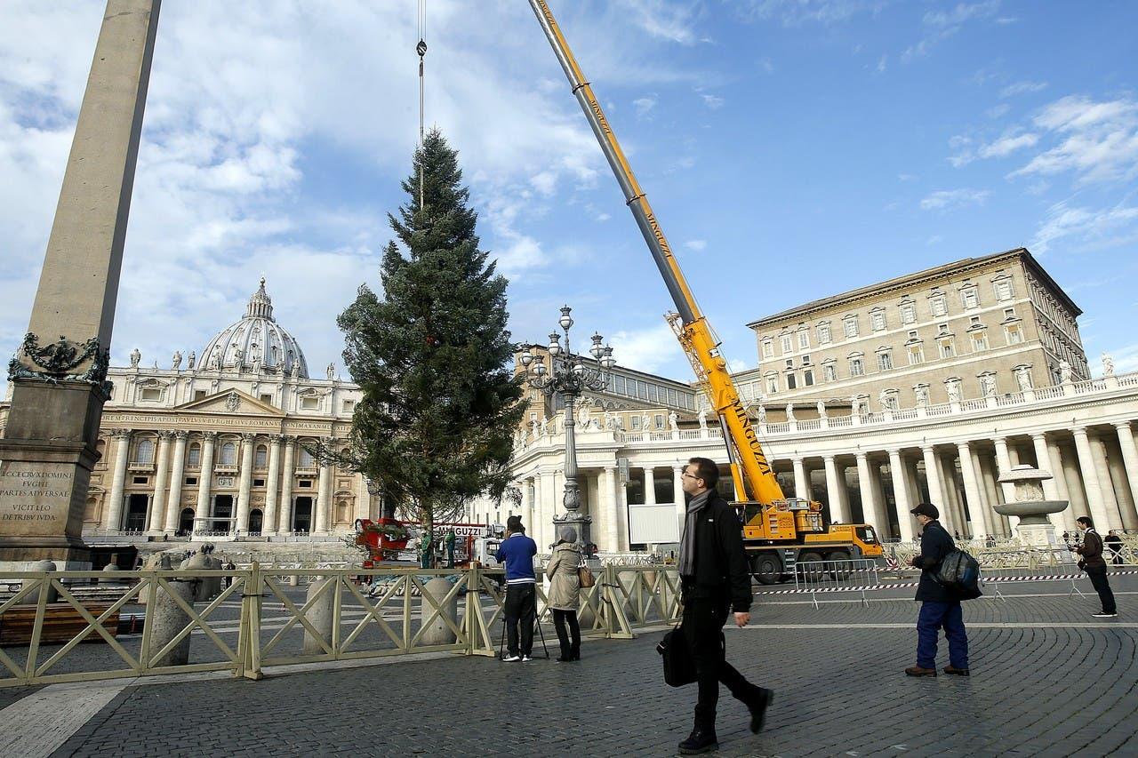 شجرة الميلاد في الفاتيكان
