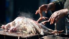 Ninth Egyptian dies of H5N1 bird flu: ministry