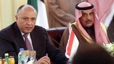 وزير خارجية مصر: زيارة السيسي للسعودية بالغة الأهمية